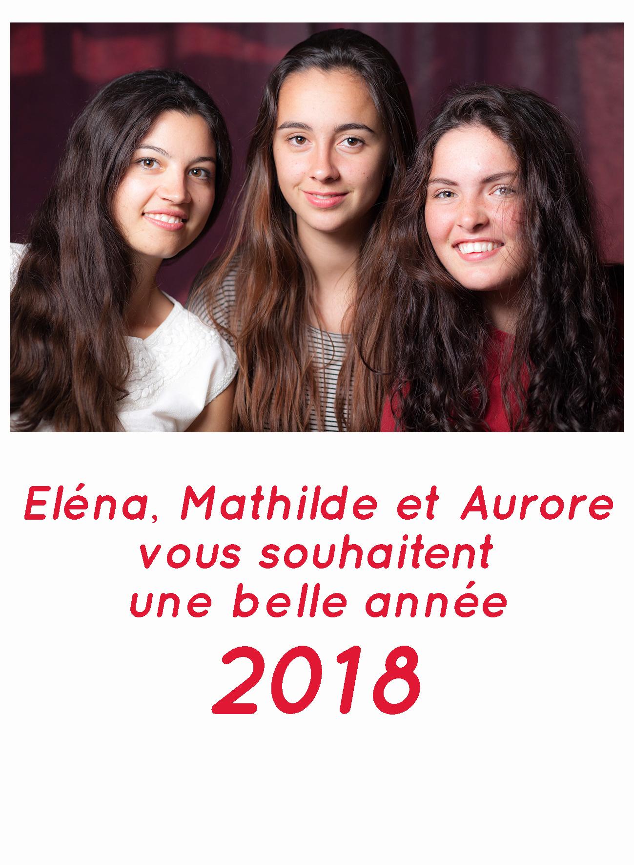 carte nouvelle année photographe Lille