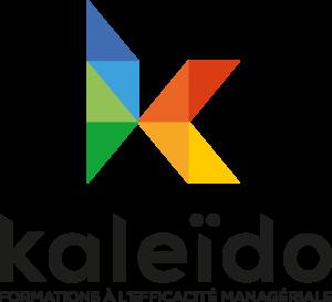 Logo de KALEIDO